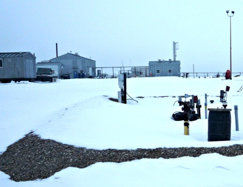 Snow out in the Field