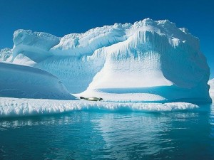 The great melting glaciers