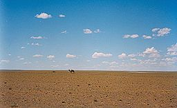 Gobi Desert of China