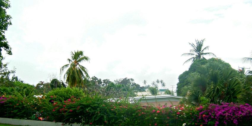 Rainforest Village - Holetown Barbados