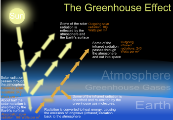 Greenhouse Effect: Widely associated with global warming