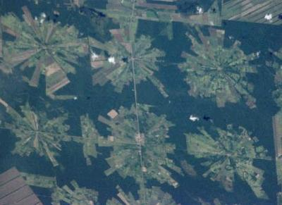 Patterns of deforestation