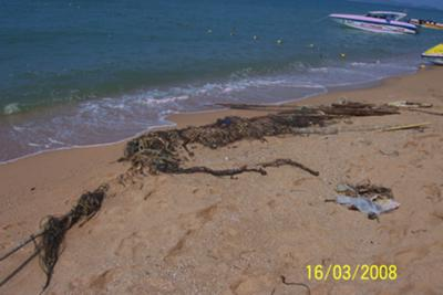 Old line and fishing nets thrown overboard
