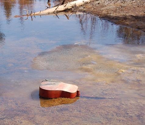 Delta Blues - Disposed Guitar in Water