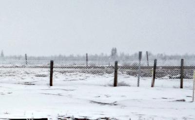WinterPeg!