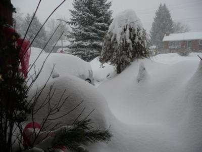 Winter wonderland in Stayner Ontario